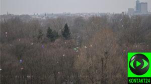 Resztki lampionów zaśmieciły park