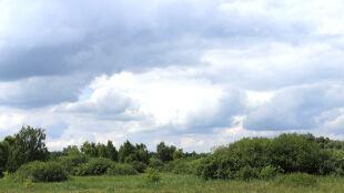 Prognoza pogody na dziś: niebo spowiją chmury. Miejscami przelotnie popada